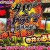 002 タイガー&ドラゴンvol 2 【沖ドキ!-30】 【パチスロ北斗の拳 転生の章】 【キングハナハナ-30】