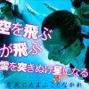 032 回胴リベンジャー遊太郎vol.32 【ベラジオ江坂店】