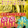 035 回胴リベンジャー遊太郎vol.35 【マルハン加古川店】