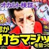 003 回胴チャレンジvol.3【ホームラン平田店】【パチスロ 閃乱カグラ】