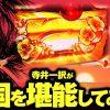 023 回胴チャレンジvol.23【キング観光サウザンド生桑店】【南国物語】