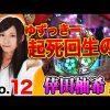 012 王道2018 〜No.12 倖田柚希編〜【押忍!番長3/CR真・花の慶次2】
