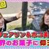 014 踊る!海ポコリン#14(○○やってみた)ポコ美&フェアリン
